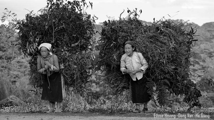 Dong-van-ha-giang-vietnam-3-870