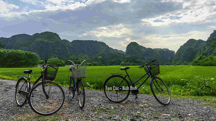 Bicycles next to rice paddy field in Nihn Bihn Vietnam