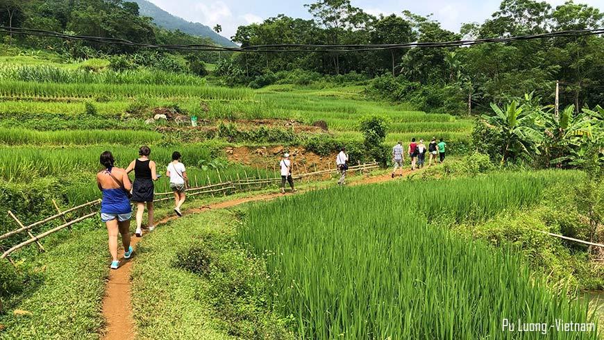 Randonnée – Trek Pu Luong Vietnam