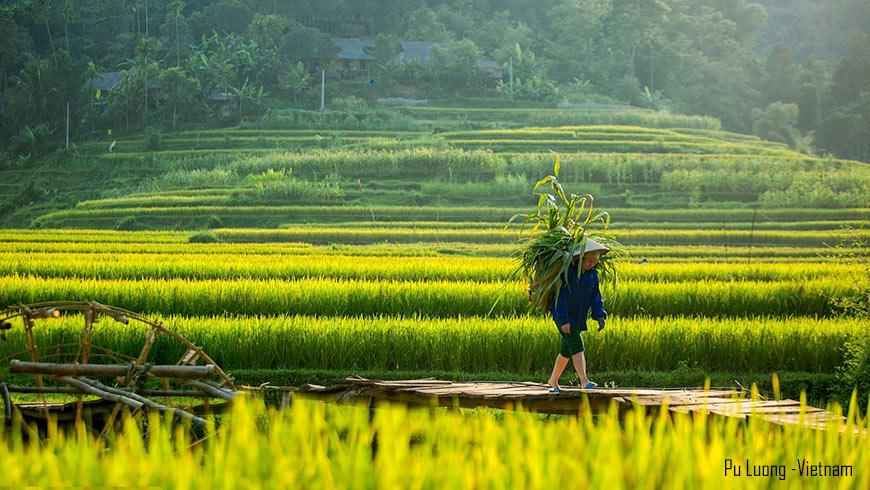 Récole à Pu Luong – Nord Vietnam