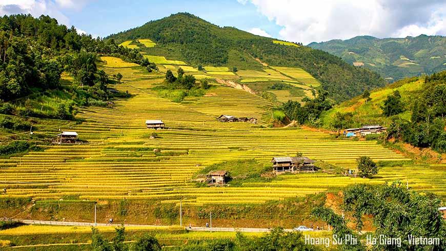 Rizière en terrasse de Hoang Su Phi – Ha Giang – Vietnam