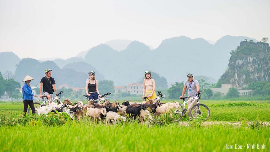 Promenade en vélo à Tam Coc