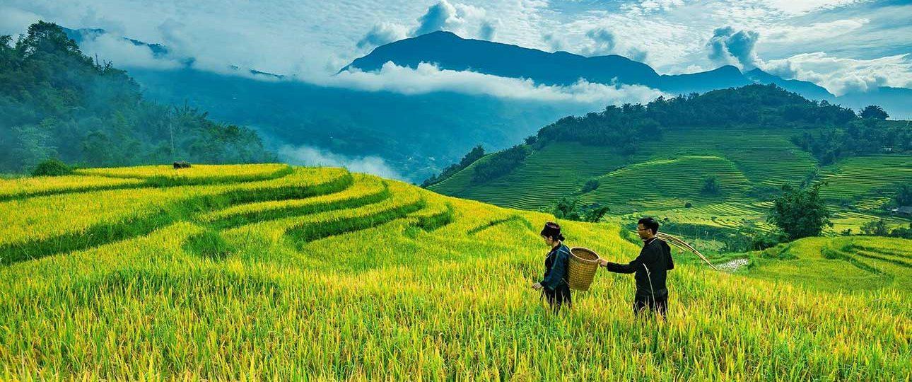 Agence de voyage au fil du vietnam 1290