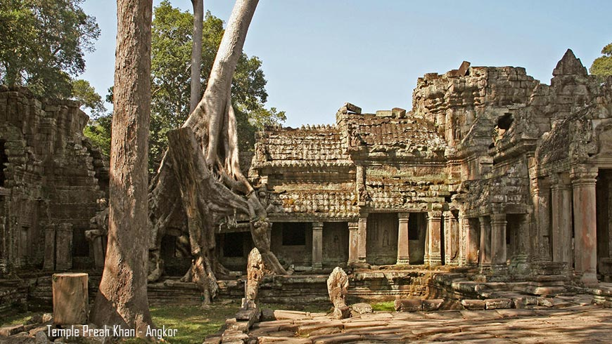 The ruins among a dense jungle setting