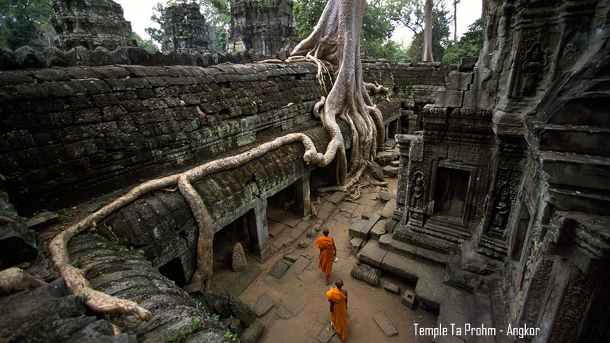 Temple Ta Prohm, Angkor