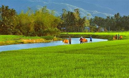 Essentiel du Vietnam avec extention à Luang Prabang